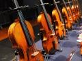 Violin Exhibition.jpg